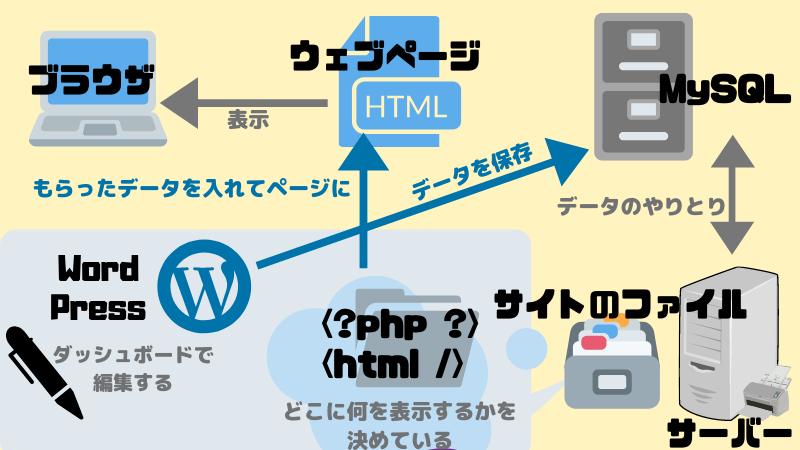 WordPressとサーバー、データベースの関係